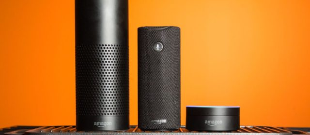 Use Amazon Alexa to Find Out More About Skin Brushing